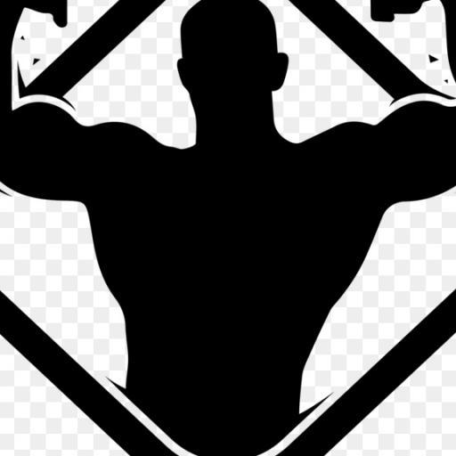 Body Art, спортивный, тренажерный зал