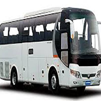 Бетра, Транспортная компания в Березовском