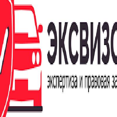 Эксвизор, Экспертная организация